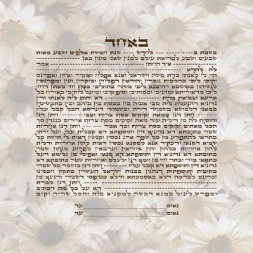 GK-44a Daisies Simple Text Ketubah Square