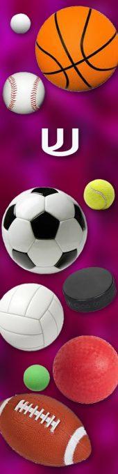 MZ148 Purple Sports Mezuzah by Mickie Caspi