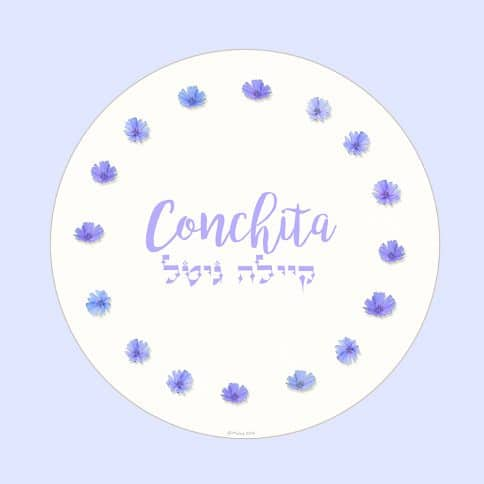 Garland Girl Name Art Periwinkle by Mickie Caspi