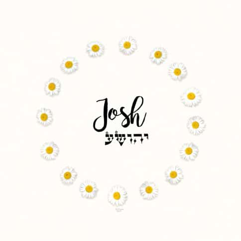 Daisy Chain Boy Name Art Eggshell by Mickie Caspi